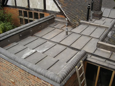 Single Ply Roofers